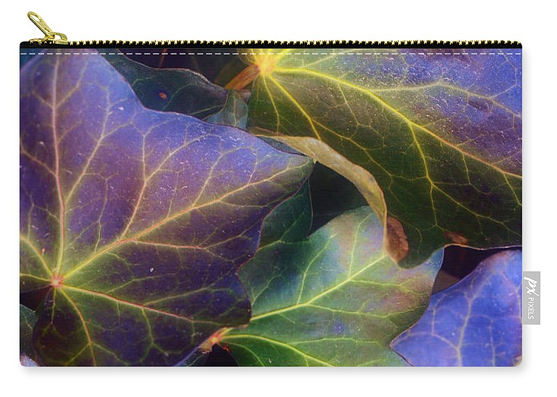 Leaves Carry-all Pouch featuring the photograph Winter Leaves by Tara Turner