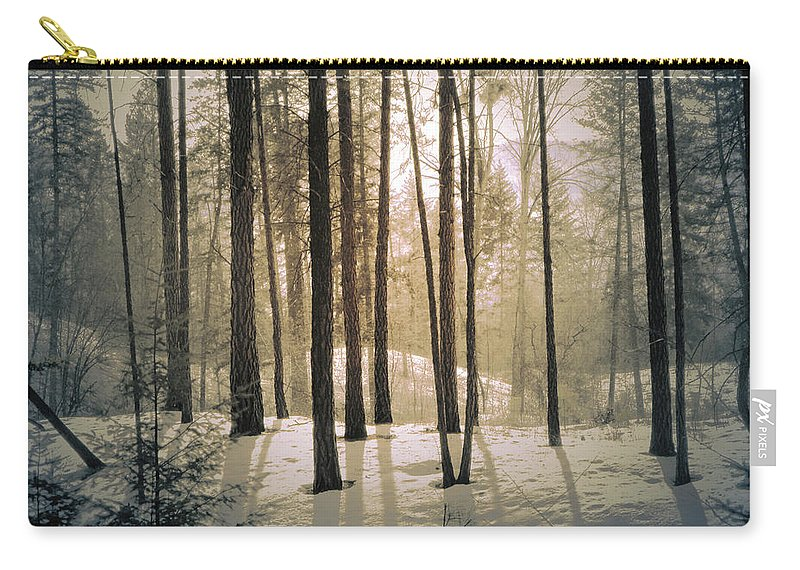 Winter Carry-all Pouch featuring the photograph Winter Light by Tara Turner
