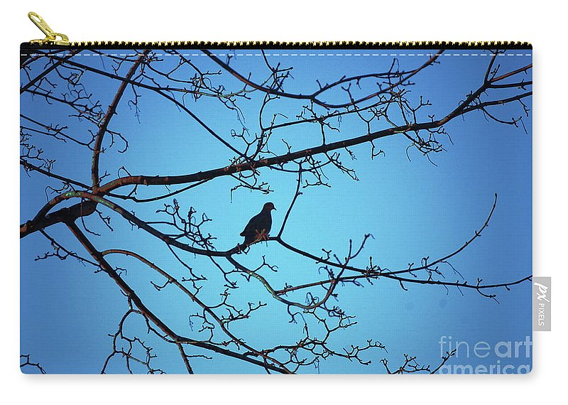 Mourning Dove Carry-all Pouch featuring the photograph Winter Mourning by Faith Harron Boudreau