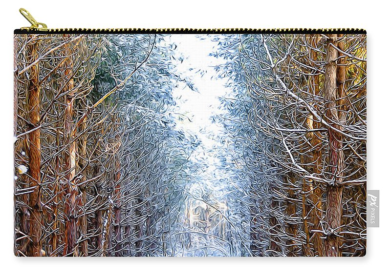 Art Carry-all Pouch featuring the photograph Winter Path by Svetlana Sewell