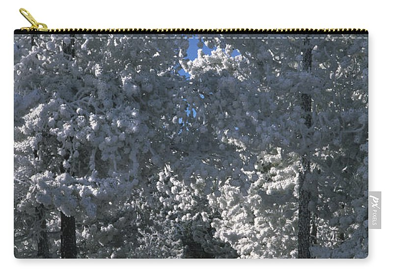 Yellowstone National Park Carry-all Pouch featuring the photograph Winter Pathway by Sandra Bronstein