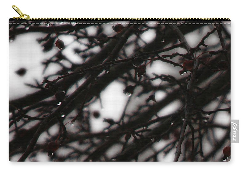 Branches Carry-all Pouch featuring the photograph Winter Rain by Linda Shafer