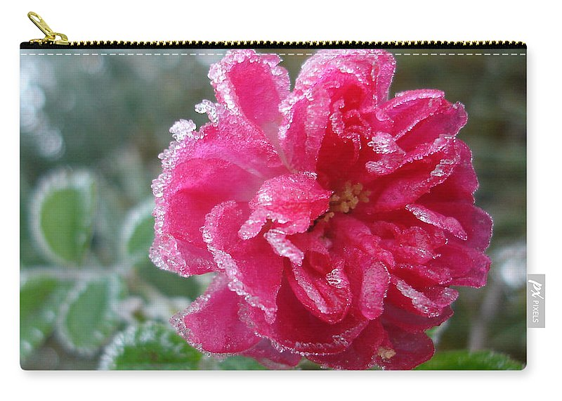 Rose Carry-all Pouch featuring the photograph Winter Rose by Susan Baker