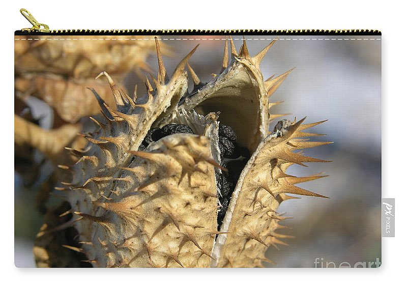 Winter Nature Carry-all Pouch featuring the photograph Winter Seed Pod by Carol Groenen
