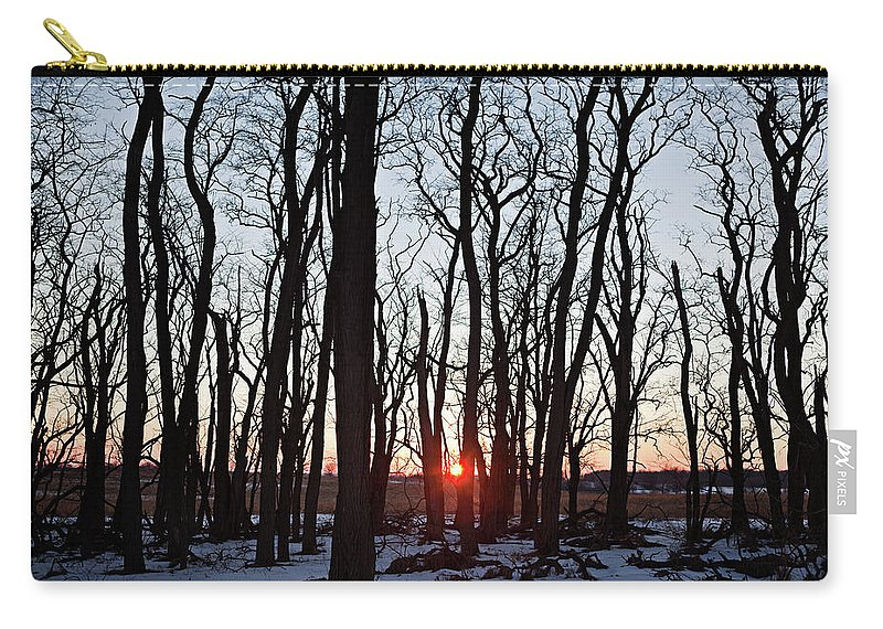 Tree Carry-all Pouch featuring the photograph Winter Trees by Steve Gadomski