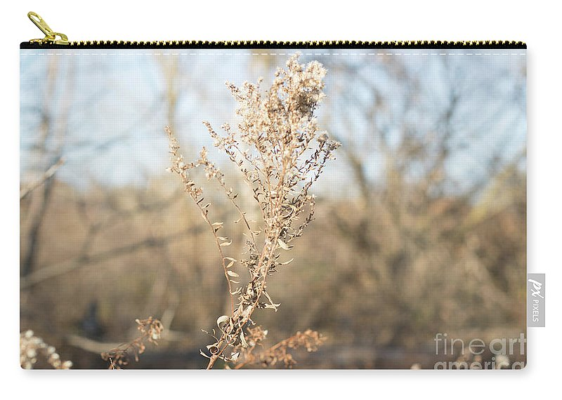 Winter Carry-all Pouch featuring the photograph Winter Weeds by Howard Roberts