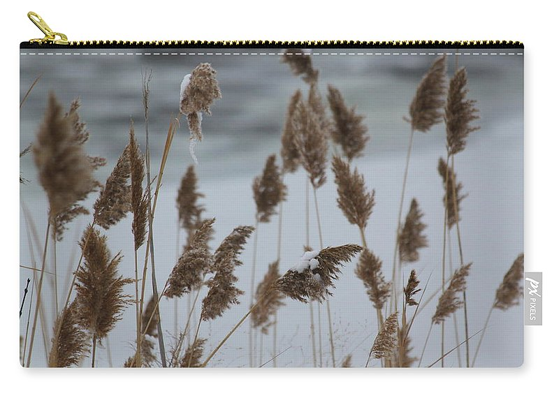 Winter Carry-all Pouch featuring the photograph Winter Weeds by Lauri Novak