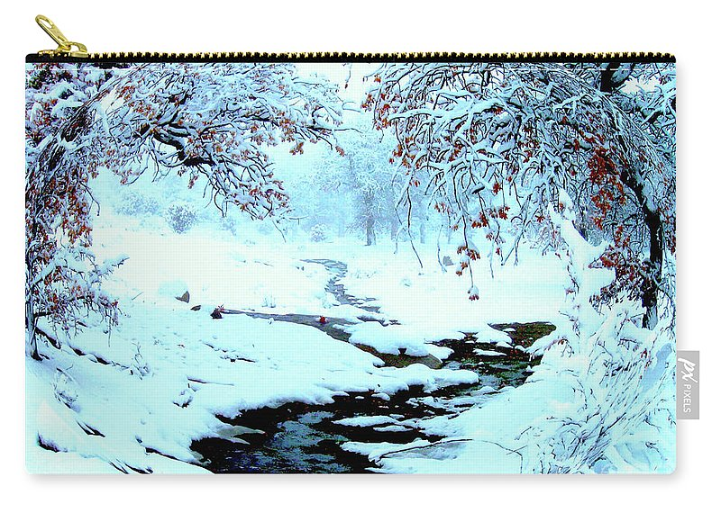 Winter Carry-all Pouch featuring the photograph Winter Wonder by Jerome Stumphauzer