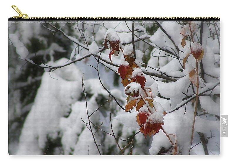 Winter Carry-all Pouch featuring the photograph Winter Wonderland by Leone Lund