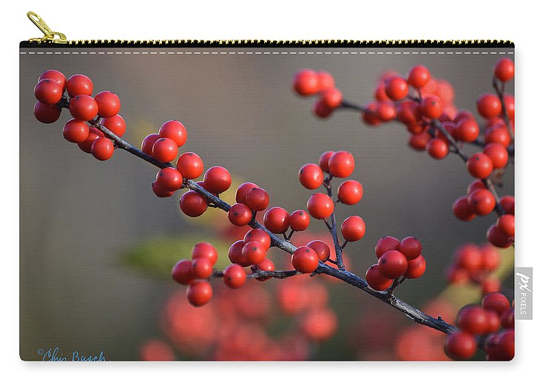 Winterberry Carry-all Pouch featuring the photograph Winterberry by Chris Busch