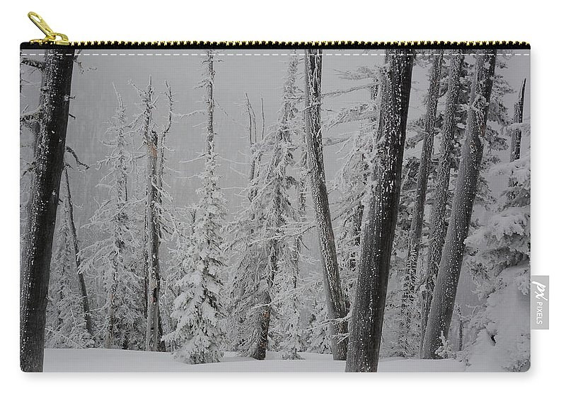 Winterland Carry-all Pouch featuring the photograph Winterland by Whispering Peaks Photography