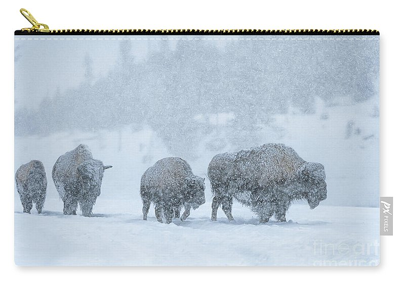 Bison Carry-all Pouch featuring the photograph Winter's Burden by Sandra Bronstein