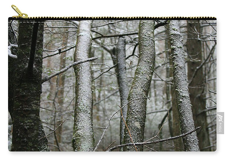 Tree Woods Forest Wood Snow White Green Winter Season Nature Cold Carry-all Pouch featuring the photograph Wintery Day by Andrei Shliakhau