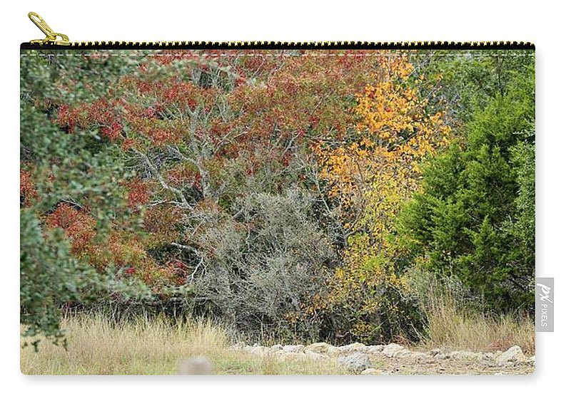Carry-all Pouch featuring the photograph Wm016 by Jeff Downs
