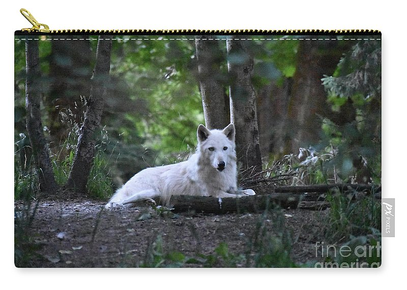 Wolf Carry-all Pouch featuring the photograph Wolf Greeting by Rose De Dan