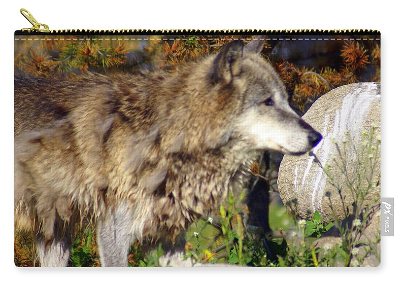 Wolf Carry-all Pouch featuring the photograph Wolf On Patorl by Marty Koch
