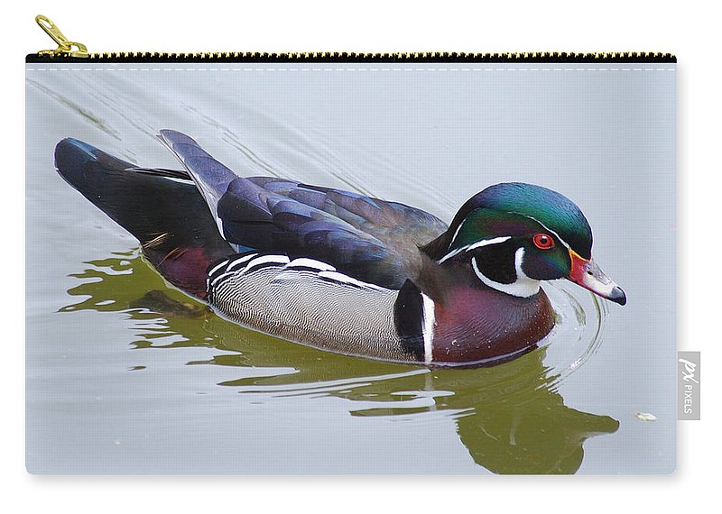 Wildlife Carry-all Pouch featuring the photograph Wood Duck by Michael Peychich
