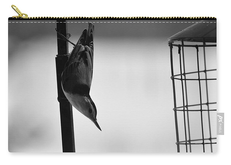 Birds Carry-all Pouch featuring the photograph Wood Pecker by Robert Scifo