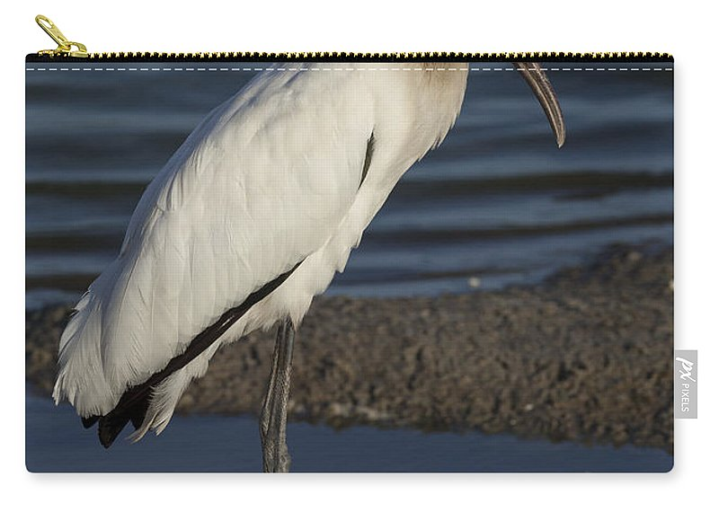 Wood Carry-all Pouch featuring the photograph Wood Stork In The Final Light Of Day by David Watkins