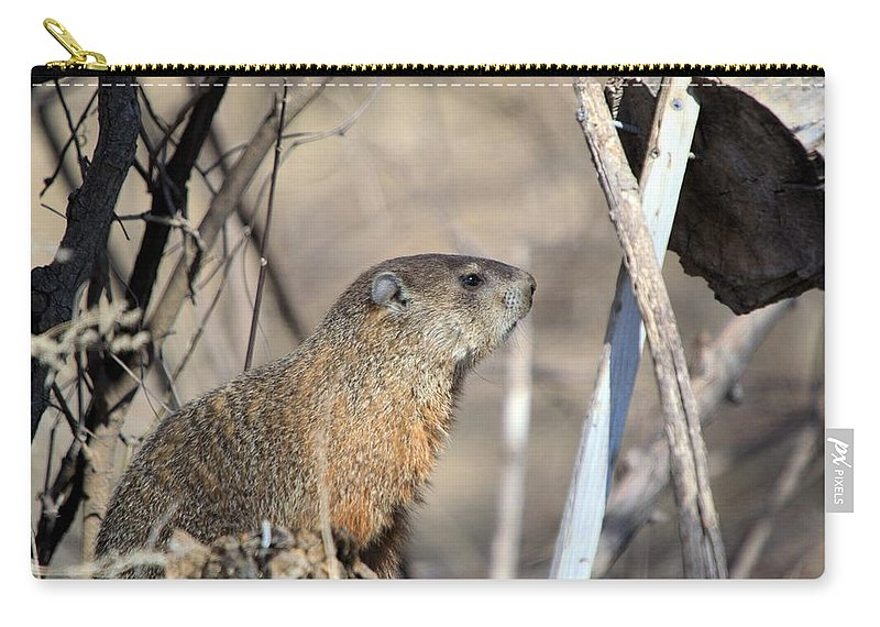 Adorable Carry-all Pouch featuring the photograph Woodchuck by Bonfire Photography