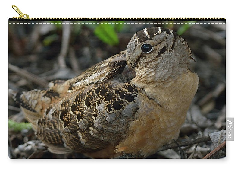 North American Carry-all Pouch featuring the photograph Woodcock At Rest by Mark Wallner