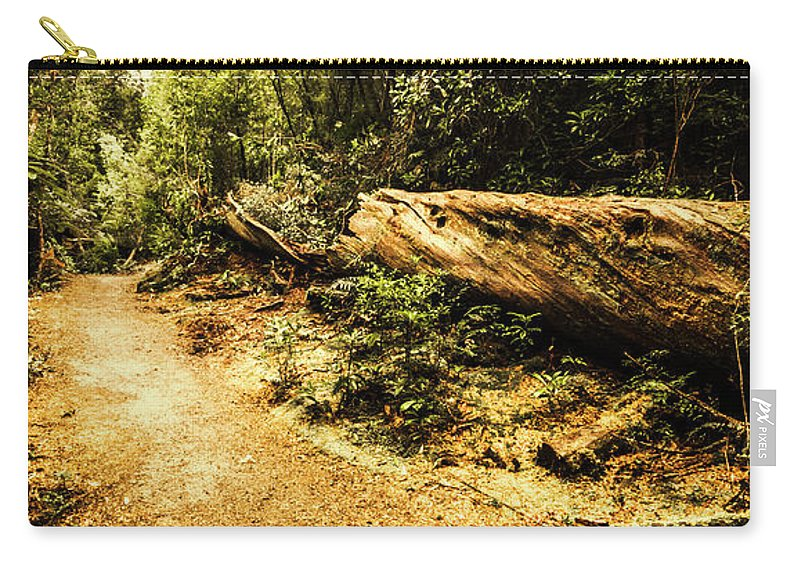 Log Carry-all Pouch featuring the photograph Woodland Nature Walk by Jorgo Photography - Wall Art Gallery