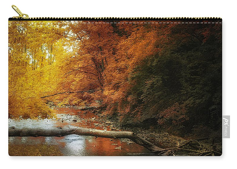 Stream Carry-all Pouch featuring the photograph Woodland Stream by Tom Mc Nemar