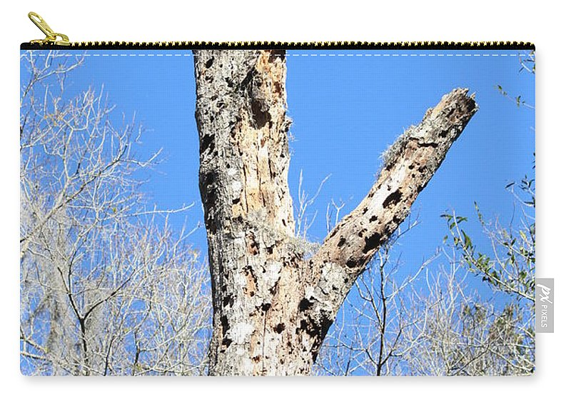 Old Tree Carry-all Pouch featuring the photograph Woodpecker Was Here by Carol Groenen