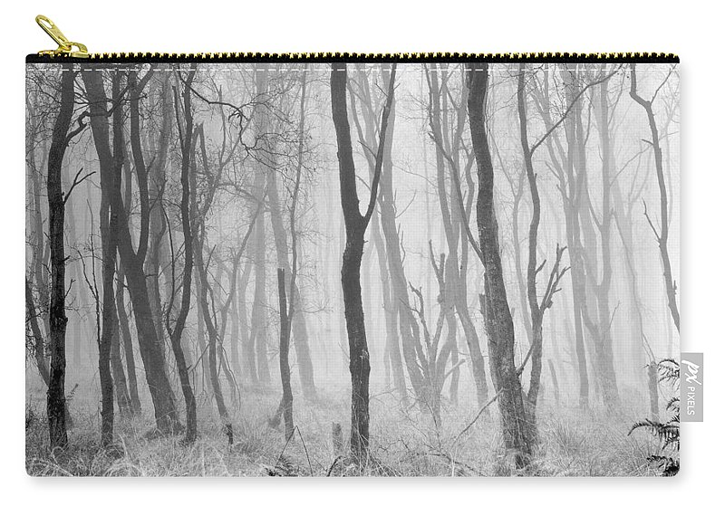 Carry-all Pouch featuring the photograph Woods In Mist, Stagshaw Common by Iain Duncan