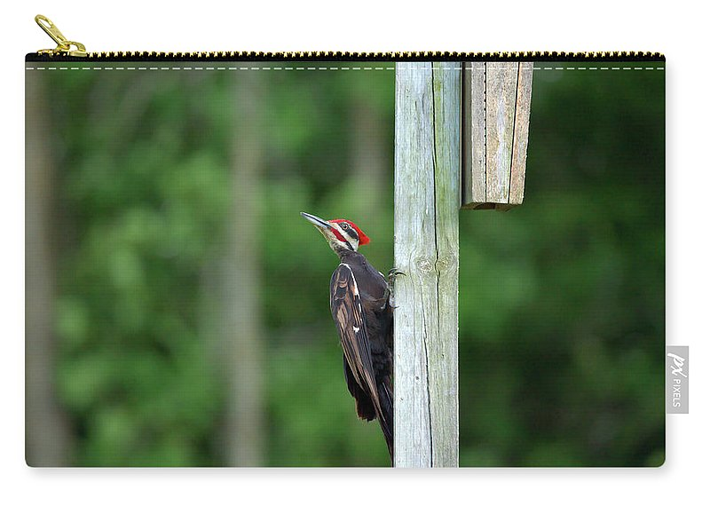 Pileated Woodpecker Carry-all Pouch featuring the photograph Woody by Linda Kerkau