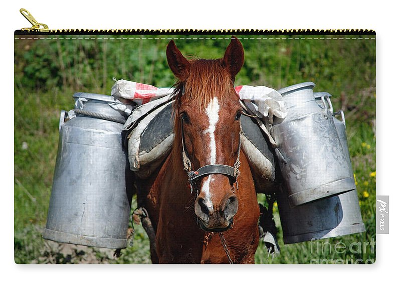 Countryside Carry-all Pouch featuring the photograph Work Horse At The Azores by Gaspar Avila