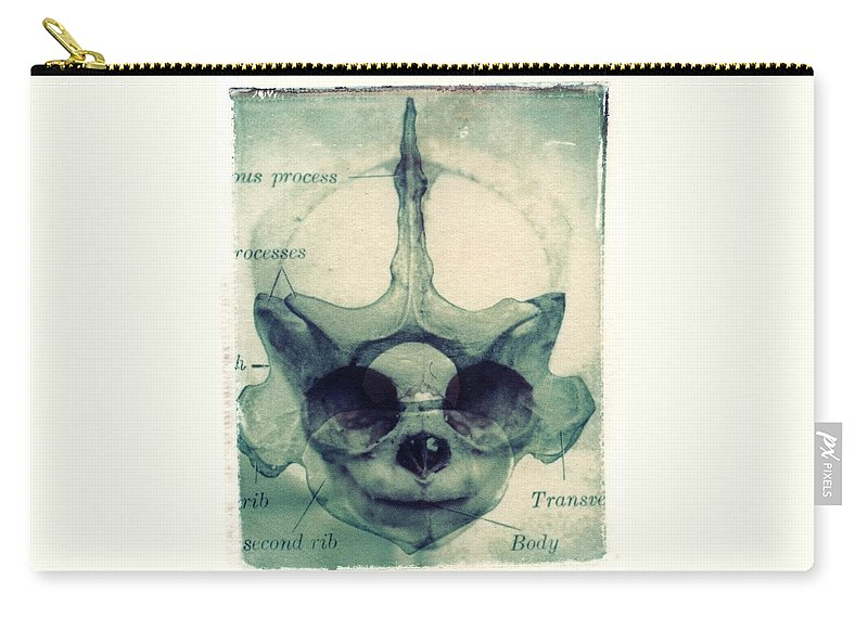 Polaroid Transfer Carry-all Pouch featuring the photograph X Ray Terrestrial No. 13 by Jane Linders