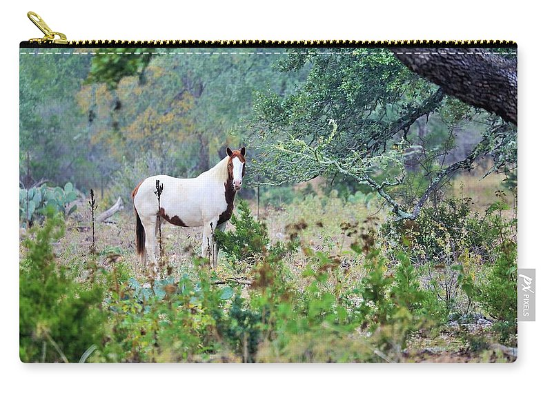 Carry-all Pouch featuring the photograph Horse0007 by Jeff Downs