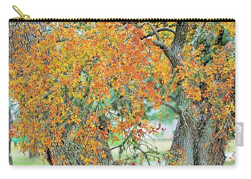 Carry-all Pouch featuring the photograph Ya037 by Jeff Downs