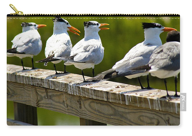 Bird Carry-all Pouch featuring the photograph Yackety Yackety by Marilyn Hunt