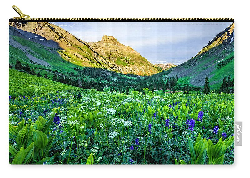 Yankee Boy Basin Carry-all Pouch featuring the photograph Yankee Boy Basin Flowers by Wick Smith