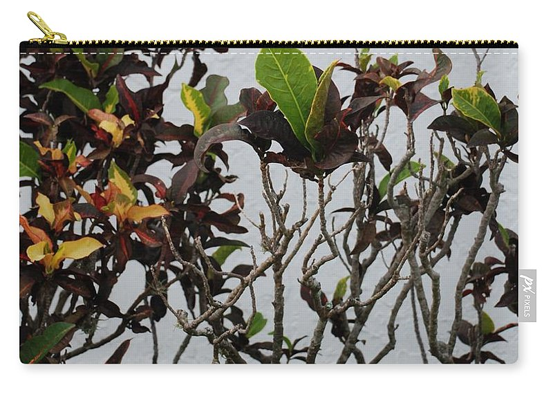 Macro Carry-all Pouch featuring the photograph Yellogreen by Rob Hans