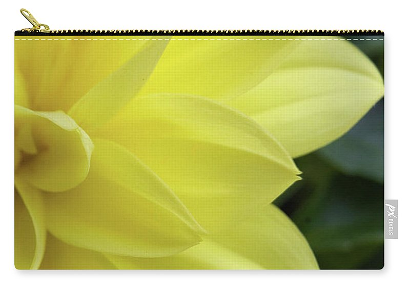 Art Carry-all Pouch featuring the photograph Yellow by Alan Look