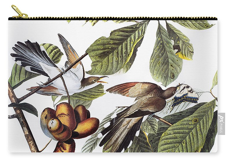 1827 Carry-all Pouch featuring the photograph Yellow-billed Cuckoo by Granger