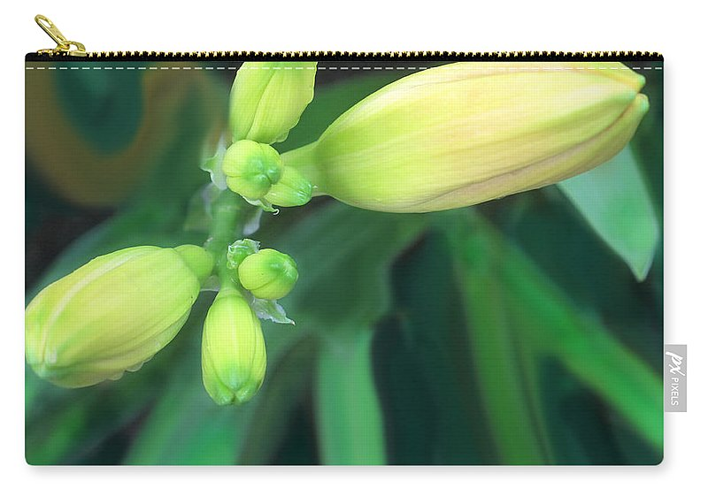 Yellow Carry-all Pouch featuring the photograph Yellow Buds by Ian MacDonald