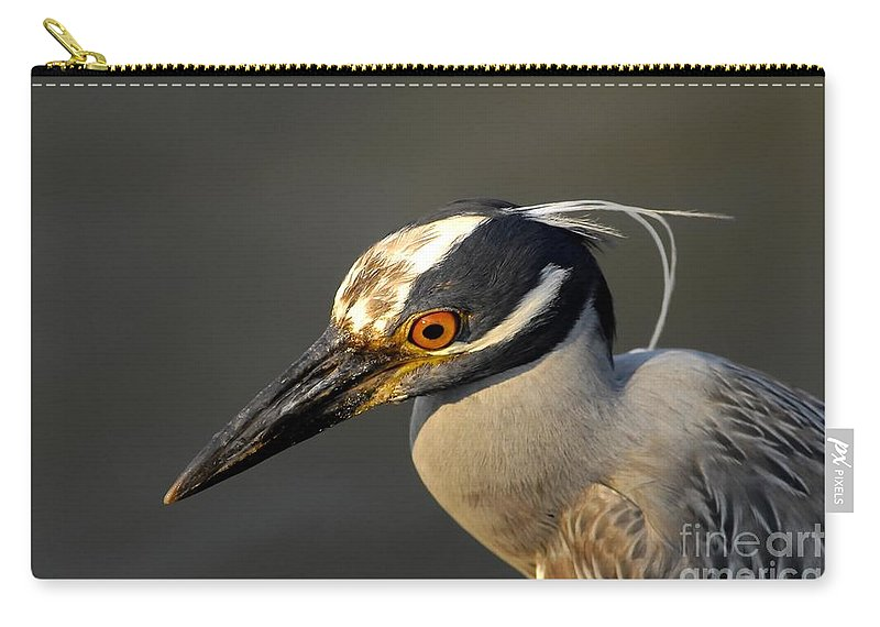 Yellow Crowned Night Heron Carry-all Pouch featuring the photograph Yellow Crowned Night Heron by David Lee Thompson