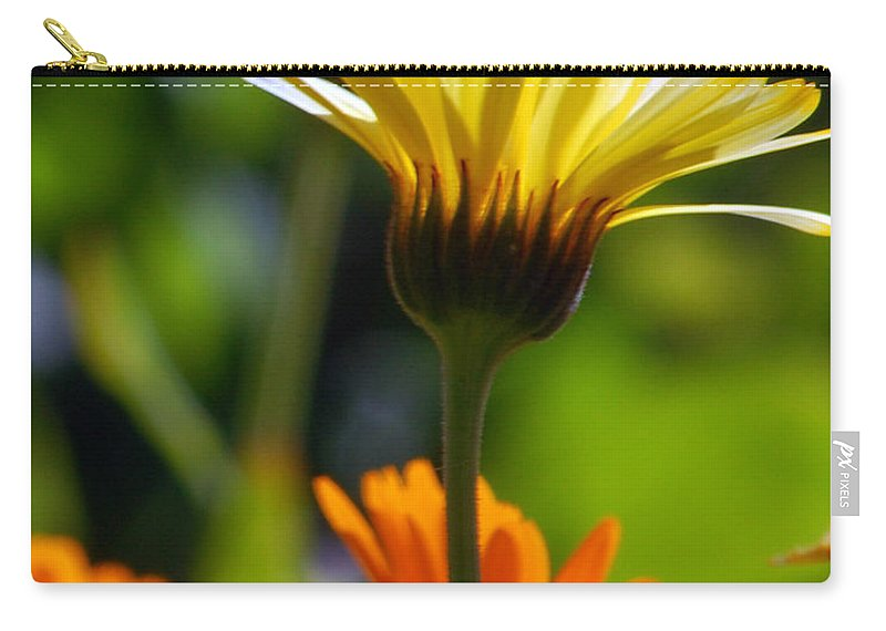 Daisy Carry-all Pouch featuring the photograph Yellow Daisy by Amy Fose