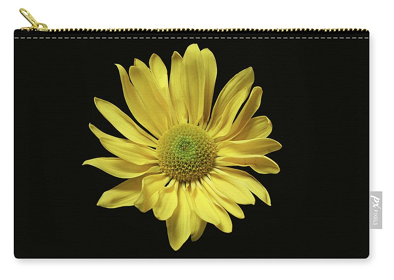 Yellow Daisy Carry-all Pouch featuring the photograph Yellow Daisy by Krisjan Krafchak