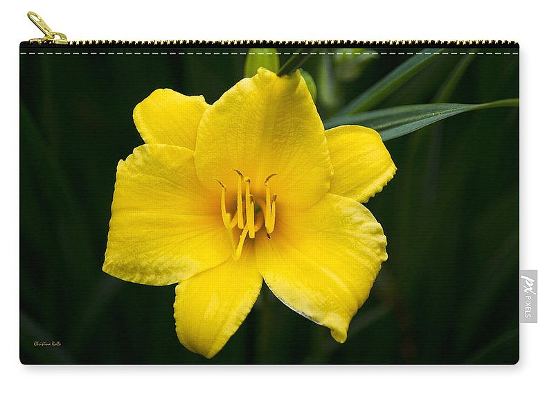 Daylily Carry-all Pouch featuring the photograph Yellow Daylily Flower by Christina Rollo