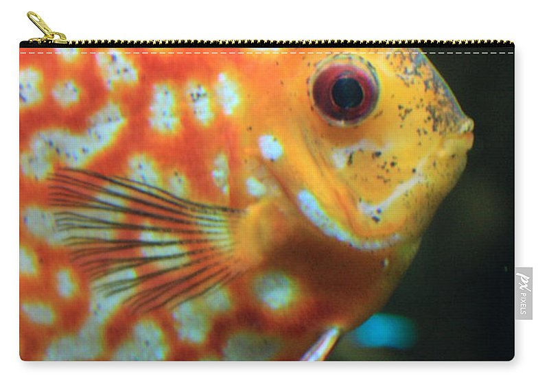 Carols Cards Carry-all Pouch featuring the greeting card Yellow Fish Profile by Carol Groenen