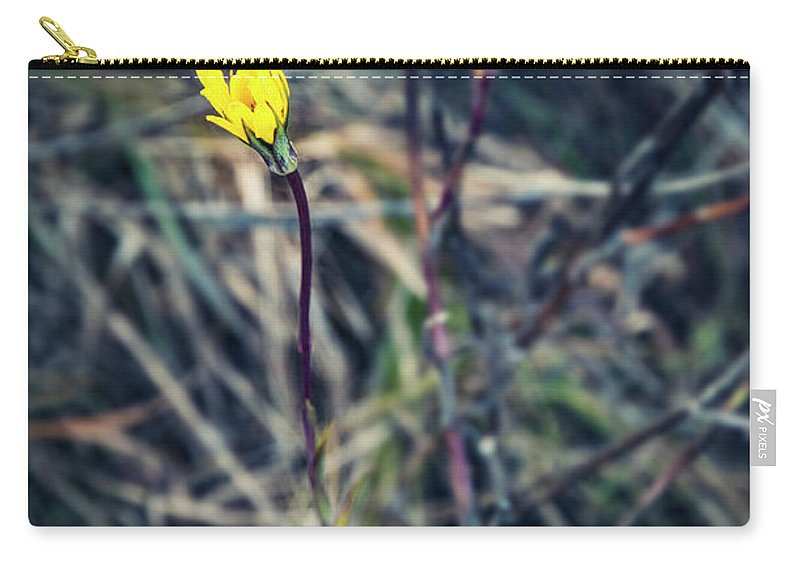 Decoration Carry-all Pouch featuring the photograph Yellow Flower In Dry Autumn Grass by Jozef Jankola