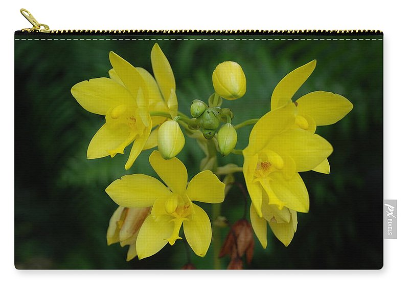 Macro Carry-all Pouch featuring the photograph Yellow Flower by Rob Hans