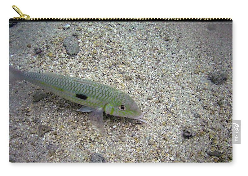 Hanauma Bay Carry-all Pouch featuring the photograph Yellow Goatfish by Michael Peychich