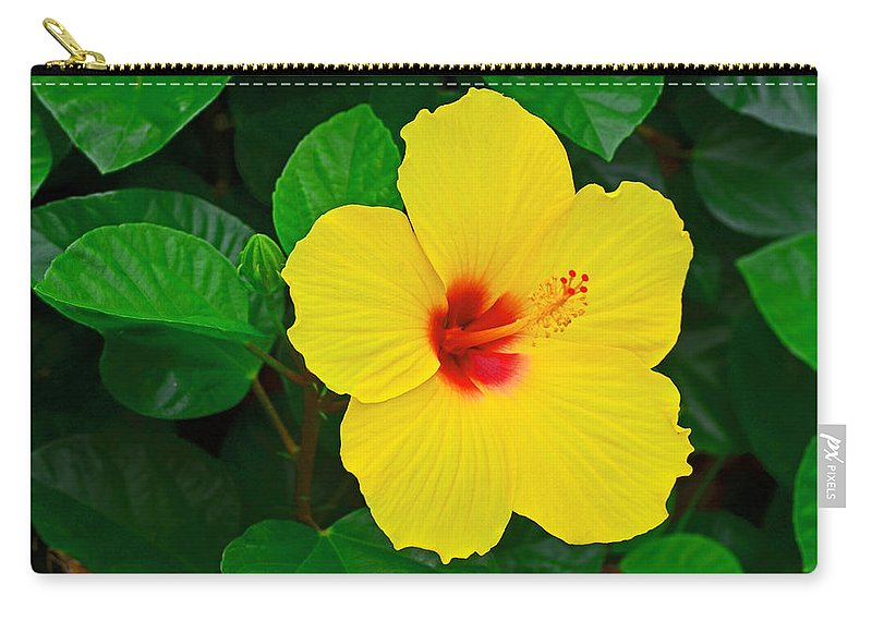 Flower Carry-all Pouch featuring the photograph Yellow Hibiscus 3388 by Dick Hopkins