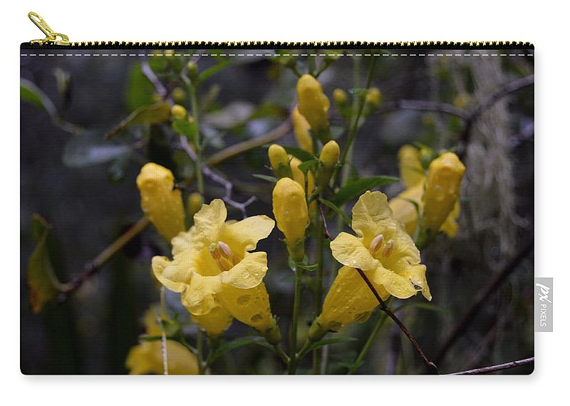 Yellow Jessamine With Raindrops Carry-all Pouch featuring the photograph Yellow Jessamine With Raindrops by Warren Thompson